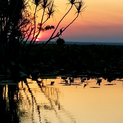 Sunset at Corroboree 1